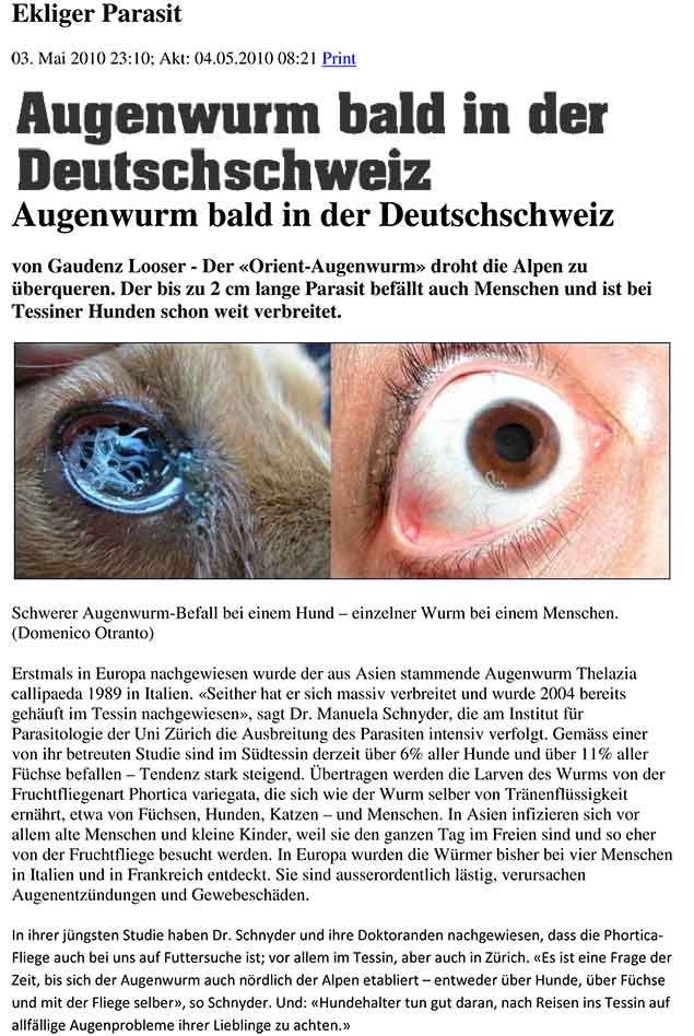 Augenwurm